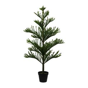 Kunstpflanze Araucarienbaum ca. 154cm
