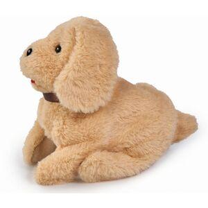 ChiChi LOVE - Salto Puppy