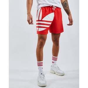 adidas Adicolor Big Trefoil Swim - Herren Shorts