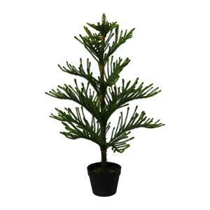 Kunstpflanze Araucarienbaum, ca. 98cm