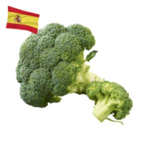 SpanienBroccoli