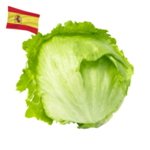 SpanienEisbergsalat