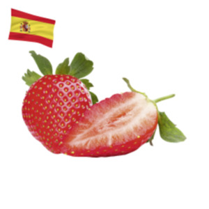 SpanienErdbeeren