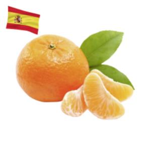 SpanienMandarinen