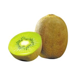 ItalienZespri Kiwi grün
