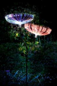 "EZSolar LED-Solar-Blume ""Dandelion"" - 2er-Set"