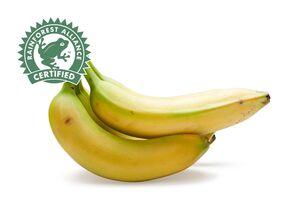 Bananen, lose
