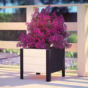 Blumenkübel Modern-Box Low 36x32x36cm