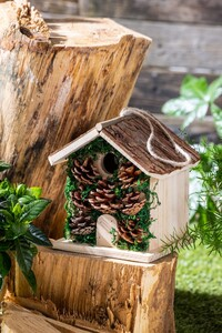 Little Friends Natur-Nisthäuschen - Mit Rindenholzdach und Moos