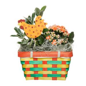 GARDENLINE     Bepflanzter Osterkorb