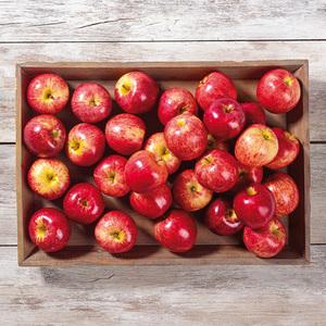 Bayerische Äpfel