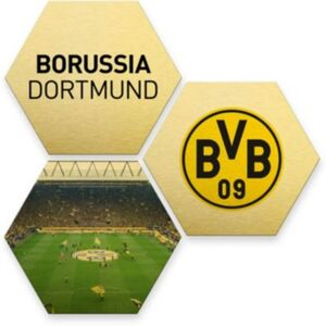 Hexagon - Alu-Dibond-Goldeffekt - BVB - bunt (3er Set) gold