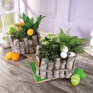 Bepflanztes Holzgefäß
