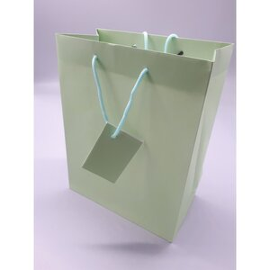 Geschenktasche, einfarbig, ca. 25,5 x 20 x 11 cm, verschiedene Farben