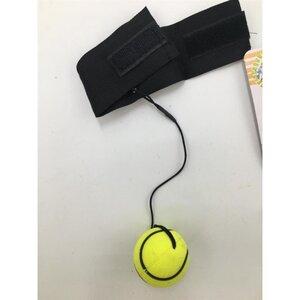 Bouncing Ball mit Handgelenkhalter