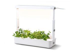 PARKSIDE® Pflanztopf, 20 Watt, mit LED Beleuchtung
