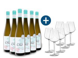 6 x 0,75-l-Flasche Weinpaket Encostas de Caíz Alvarinho trocken, Weißwein mit 6er Weißwein-Gläserset vanWell