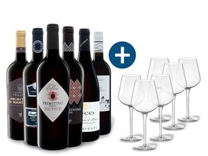 6 x 0,75-l-Flasche Weinpaket Italienische Weine mit 6er Rotwein-Gläserset vanWell