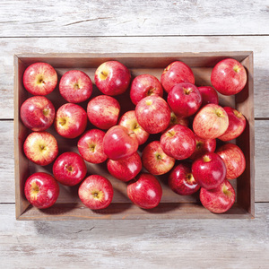 Brandenburger Äpfel