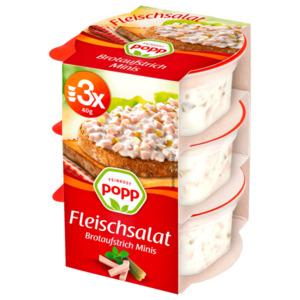 Popp Fleischsalat