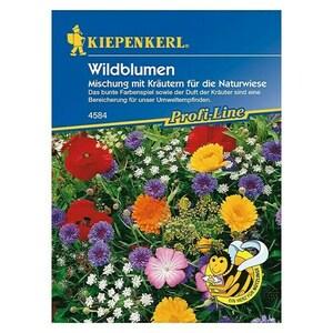 Kiepenkerl Profi-Line Blumenmischung Wildblumen