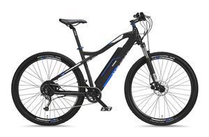 Telefunken 29 Zoll Mountain E-Bike Aufsteiger M920
