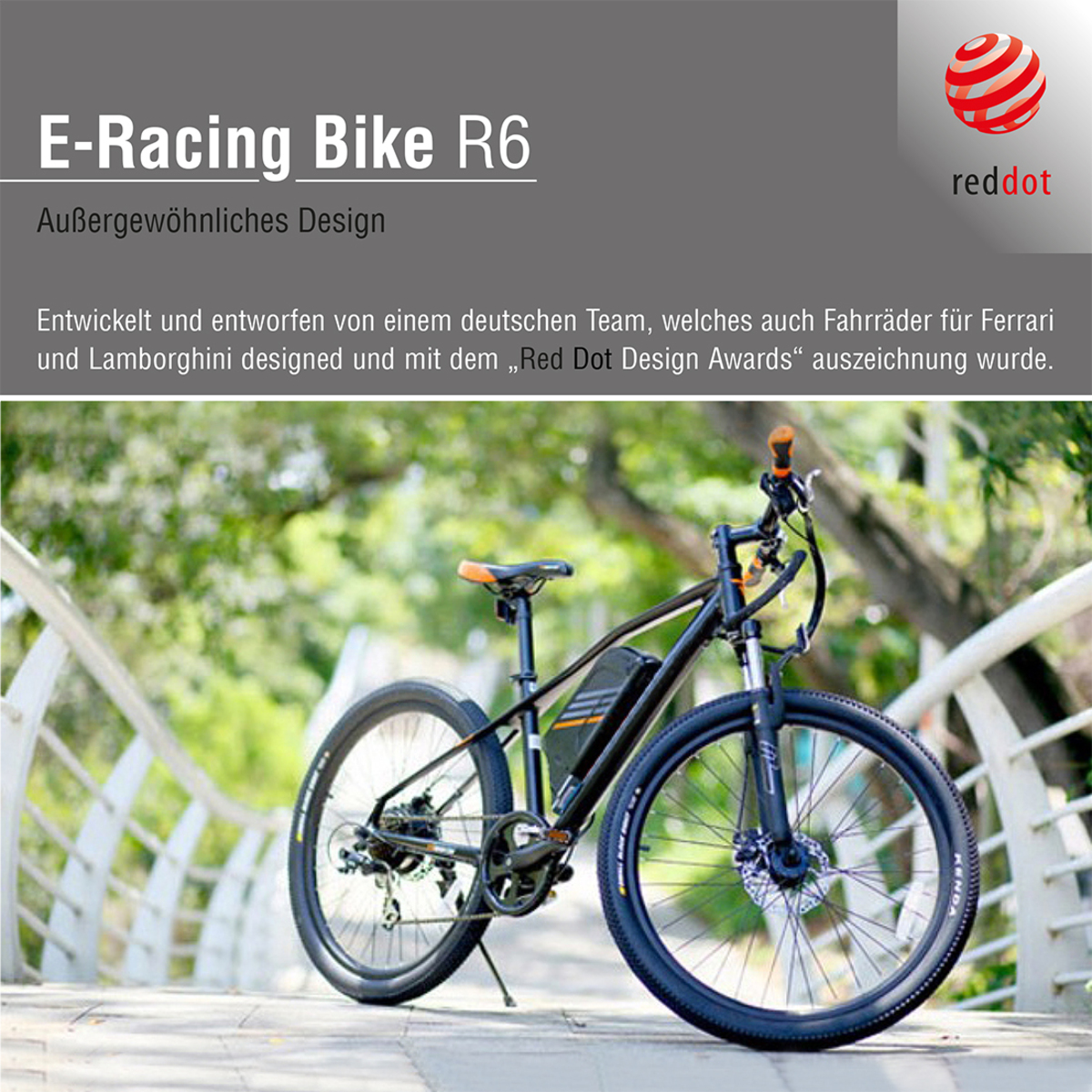Bild 1 von Sachsenrad E-Racing Mountain Bike R6 28 Zoll