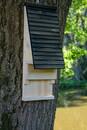 Bild 4 von dobar Fledermauskasten mit Belüftungsschlitzen, Schwarz