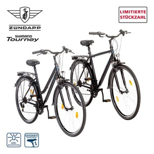 Trekkingrad Silver 1.0 28er • Drehgriffschalter • Alu-V-Brake-Bremsen • Rahmenhöhe: 46 cm (Damen), 52 cm (Herren), Preis für vormontierte Räder, je