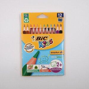 BIC Kids Evolution 21er-Set Buntstifte, farblich sortiert