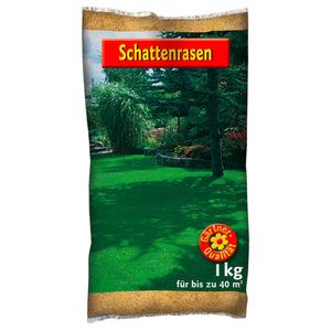 Schattenrasen Saatgut 1 kg