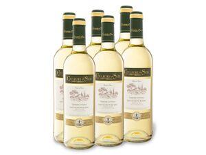 6 x 0,75-l-Flasche Couleurs du Sud Sauvignon Blanc Pays d'Oc IGP trocken, Weißwein
