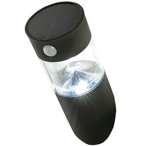 I-Glow SMD-LED-Solar-Wandleuchte aus Edelstahl und Kunststoff