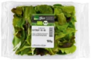 Italien EDEKA Bio Pflücksalat oder Feldsalat
