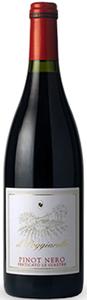 Il Poggiarello Pinot Nero Perticato Le Giastre  - Rotwein, Italien, Trocken, 0,75l