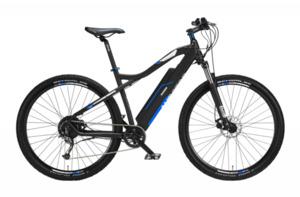 Telefunken E-Bike Mountainbike 29'' Aufsteiger M920 , blau