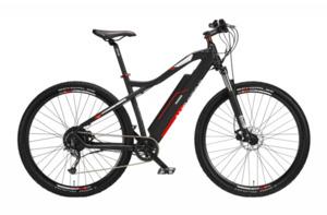 Telefunken E-Bike Mountainbike 29'' Aufsteiger M920, rot