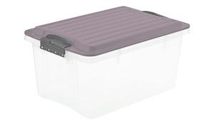 Rotho Aufbewahrungsbox mit Deckel - lila/violett - Kunststoff - Aufbewahrung