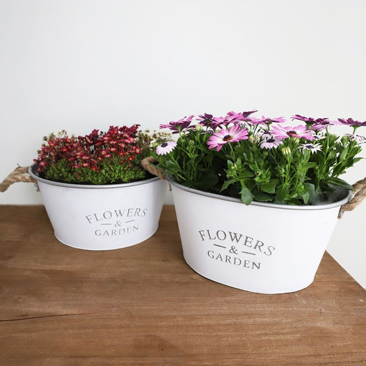 Bild 5 von Zink-Pflanzwanne Flowers & Garden 38,5x20x30cm