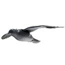 """Bild 1 von Gardigo Vogelabwehr-Figur """"Falke"""""""