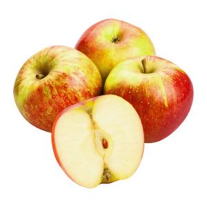 GUT BIO  Bio-Äpfel