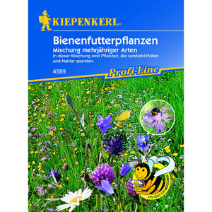 Kiepenkerl              Bienenfutterpflanzen mehrjährig