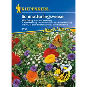 Kiepenkerl              Schmetterlingswiese