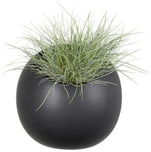 Übertopf Plant in Schwarz