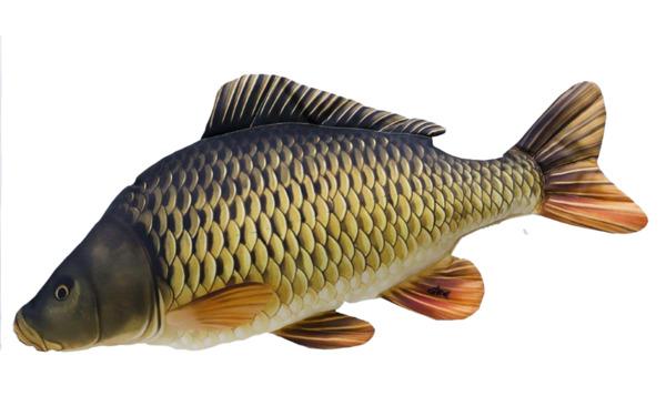 Paladin Stofftier Karpfen 64 cm