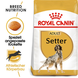 Royal Canin Setter Adult