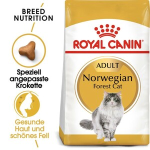 Royal Canin Norwegian Forrest Cat Adult