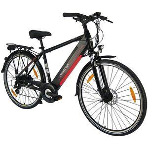 Maxtron E-Trekking-Bike MT1 Herren