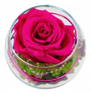 Long Life Rose Curly Kugelglas 7 cm, pink