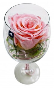 Long Life Rose Leonardo Weinglas 23 cm, rosa